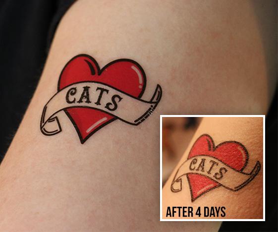 Fake tattoo - I love cats